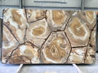 Palomino Granite Slab (2)