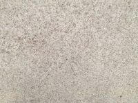 polished pana white granite surface