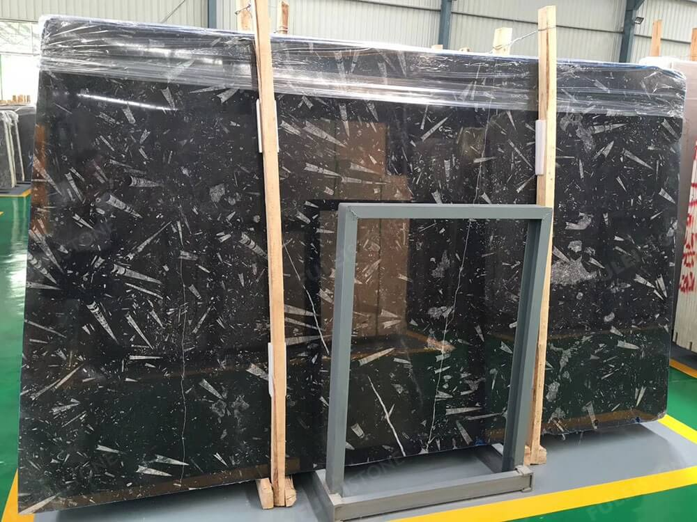 Fossil Black Marble Slabs