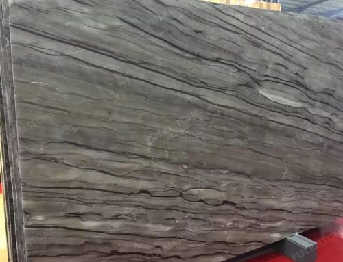 Sequoia Brown Quartzite Slab