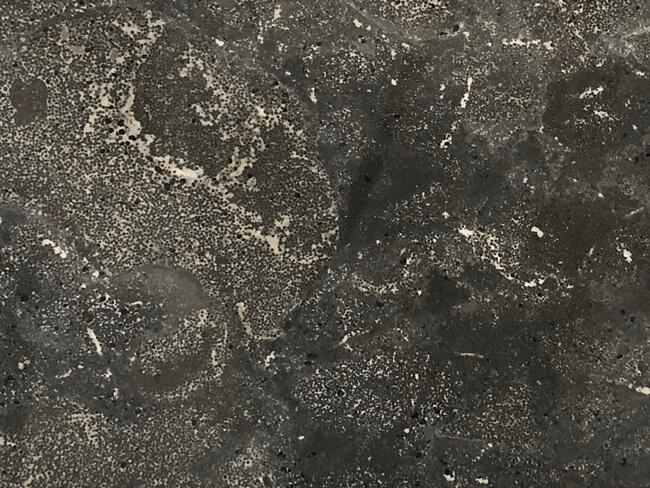 Pietra d` Avola Limestone Close Up