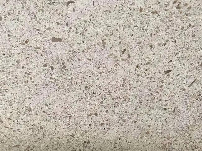 Portugal Limestone Close Up